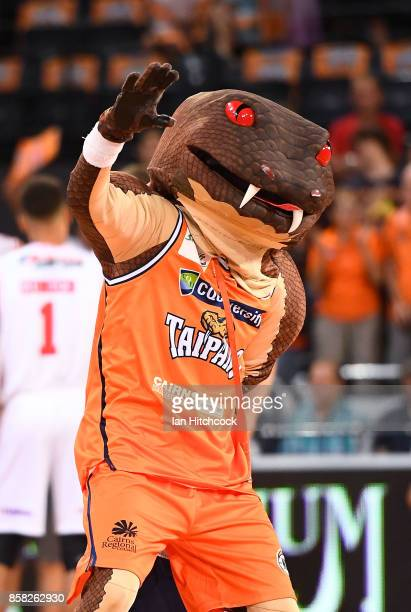 Taipan mascot performs before the start of the round one NBL match between the Cairns Taipans and the Illawarra Hawks at Cairns Convention Centre on...