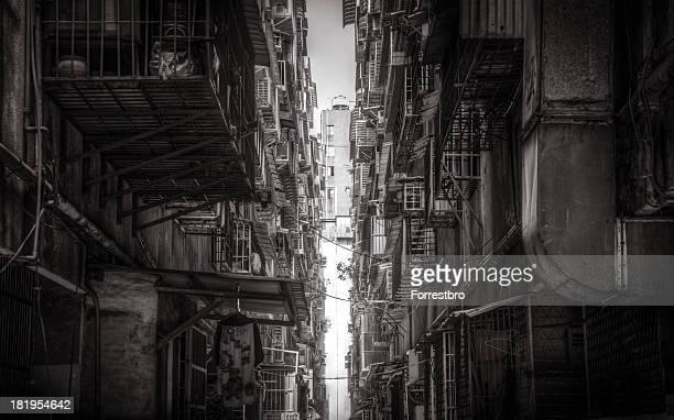Taiwan Alley