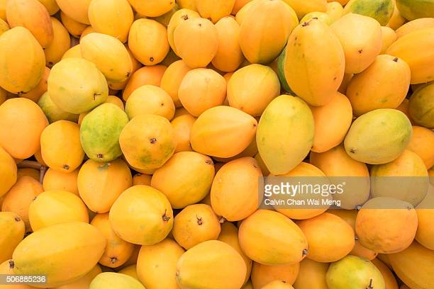 Taiwanese Golden Honey Passion fruit