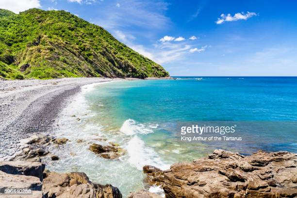 taiwan's most beautiful coast - coconut crab stock pictures, royalty-free photos & images