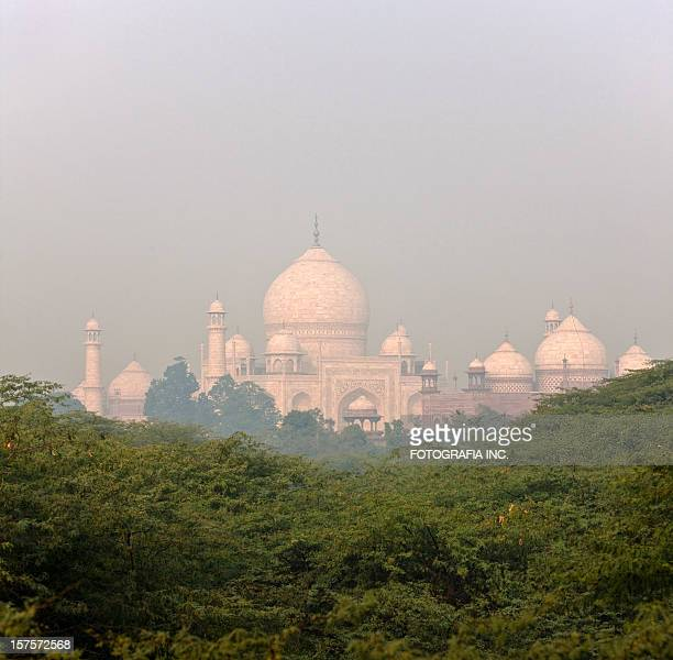 Taj in morning mist