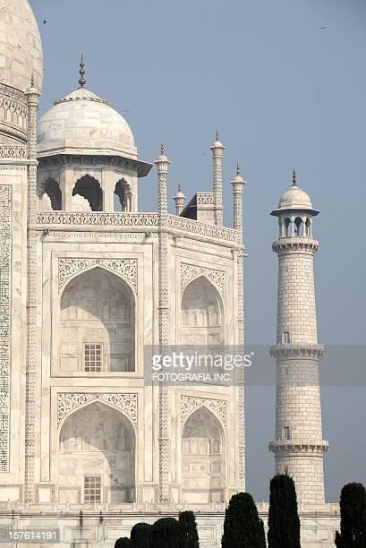Taj in the morning