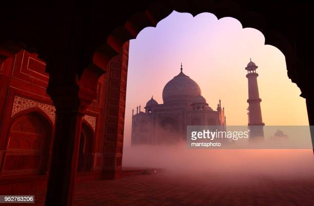 taj mahal, agra, india - taj mahal stock photos and pictures
