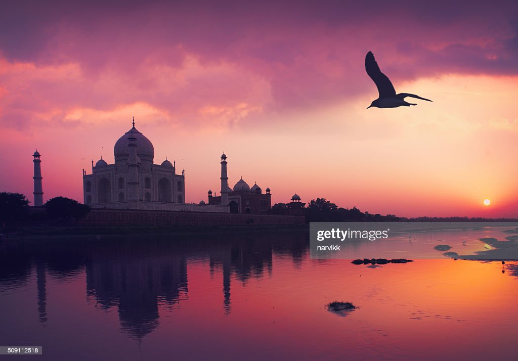 Taj Mahal and the Yamuna River : Stock Photo