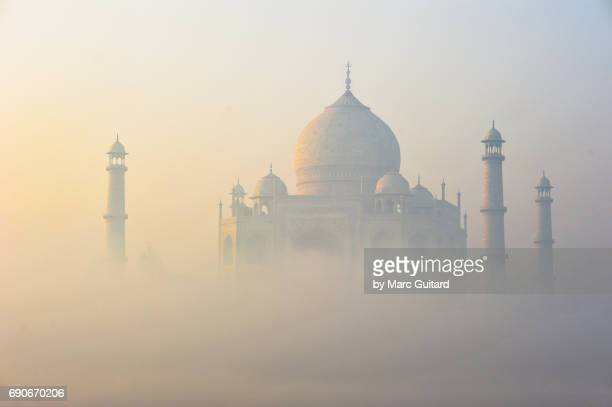 taj mahal at dawn, agra, uttar pradesh, india - taj mahal stock pictures, royalty-free photos & images