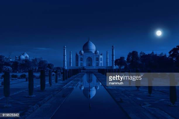 taj mahal in agra, india in the light of the full moon - taj mahal stock photos and pictures