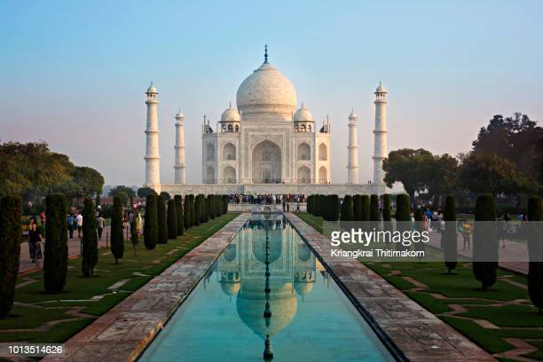 taj mahal in the morning. - taj mahal stock photos and pictures