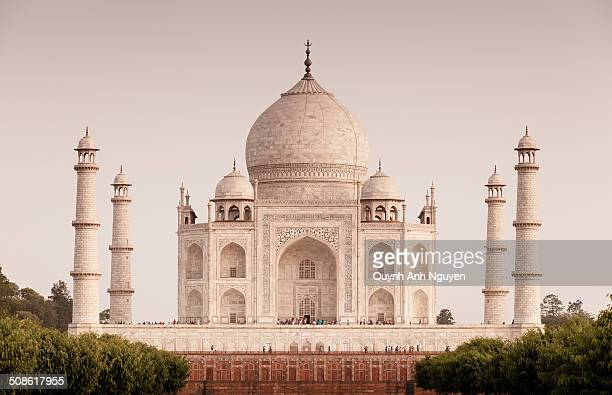 taj mahal, india - taj mahal stock photos and pictures