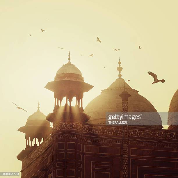 taj mahal - mosque stock pictures, royalty-free photos & images