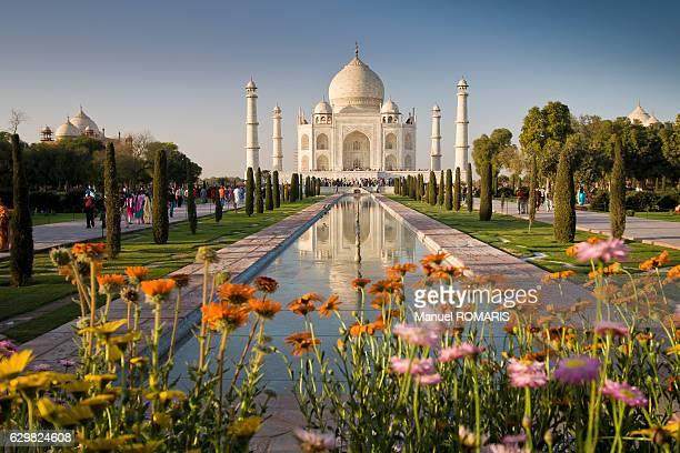 taj mahal - taj mahal stock pictures, royalty-free photos & images