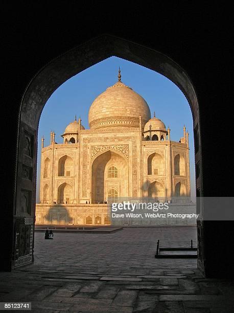 taj mahal - dave wilson webartz stock pictures, royalty-free photos & images