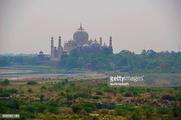 Taj Mahal seen from Agra Fort, Agra, India
