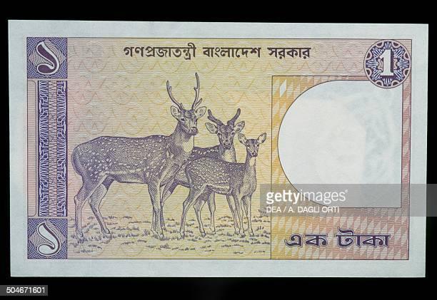 Taka banknote, 1980-1989, reverse, chital. Bangladesh, 20th century.