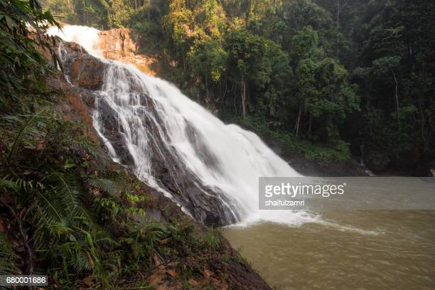 takah tinggi waterfall in endau rompin national park, malaysia. - shaifulzamri stock pictures, royalty-free photos & images
