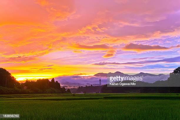 takaharayama at sunset, tochigi prefecture - 六月 ストックフォトと画像