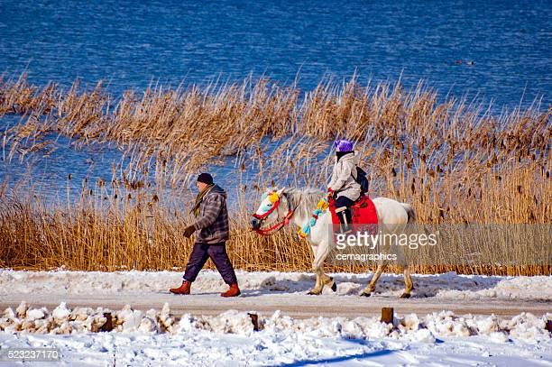 Take a trip with a horse near Abant Lake