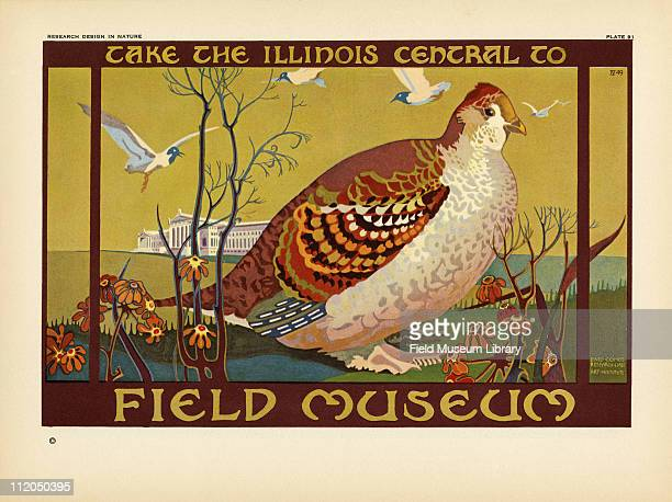 Take the Illinois Central to Field Museum color poster which includes a Grouse and the Field Museum building mid 1920s