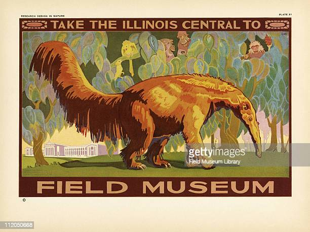 Take the Illinois Central to Field Museum color poster which includes a Great Anteater and the Field Museum building mid 1920s