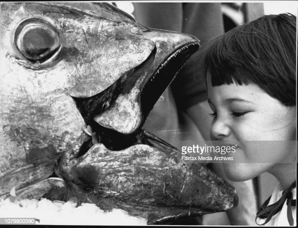 Taken at The Fish Markets Large Blue Fin Tuna Fallon Wheeler aged from Narromine and Tuna***** Quality Seafoods estimated its worth at about $2500...