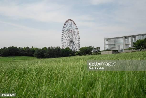 Taken in Kasai Rinkai Park on a refreshing early summer.