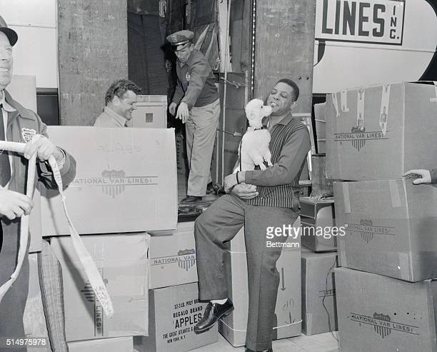 Taking a breather in the midst of a busy moving day, Willie Mays, star slugger of the San Francisco Giants, gets an affectionate kiss from his pet...