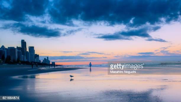 Taking a morning walk at the beach of Gold Coast, Australia