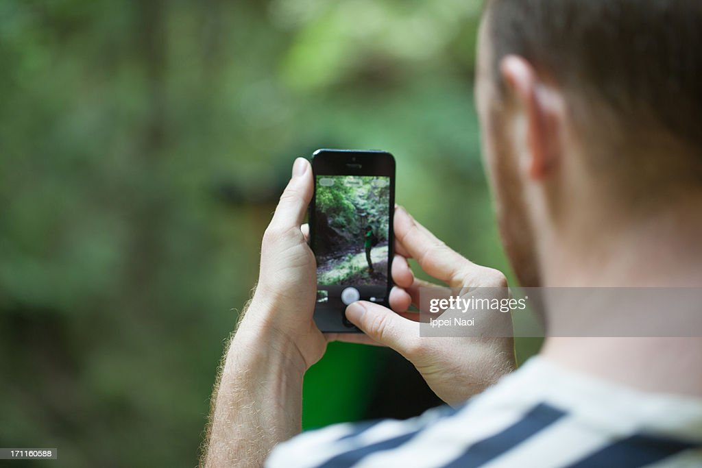 Taking a photo with a smartphone in a forest : Stock Photo