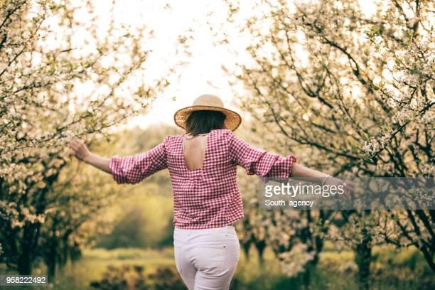 nemen van een wandeling in de boomgaard - orchard stockfoto's en -beelden