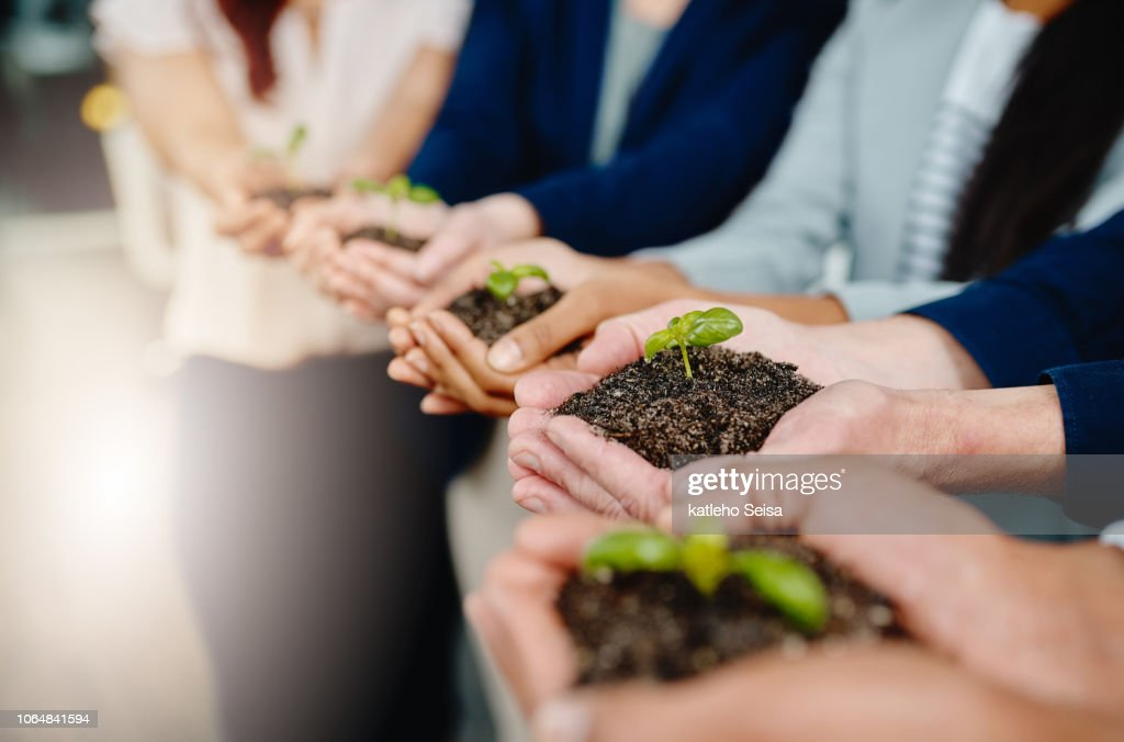 Taking business from the ground up : Stock Photo