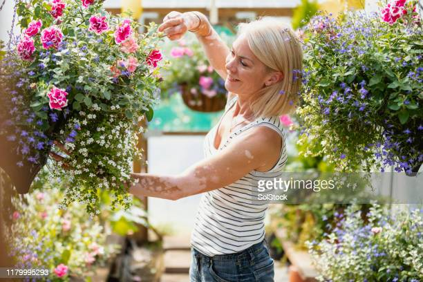 taking care of her flowers - hanging basket stock pictures, royalty-free photos & images