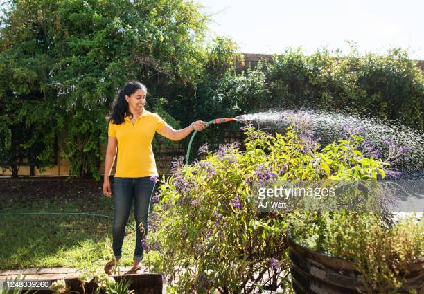 taking care of her plants - hose stock pictures, royalty-free photos & images