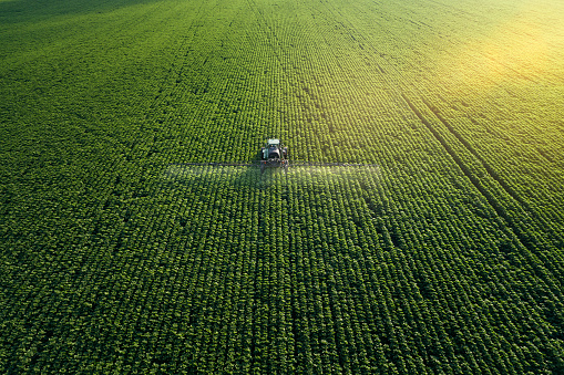 Taking care of the Crop. Aerial view of a Tractor fertilizing a cultivated agricultural field. 1154958041