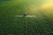Taking care of the Crop. Aerial view of a Tractor fertilizing a cultivated agricultural field.