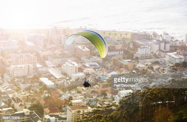 taking flight. - kapstadt stock-fotos und bilder