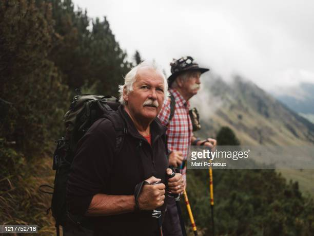 taking in the mountain view - austria stock pictures, royalty-free photos & images