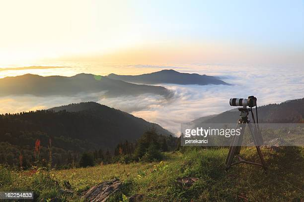 Taking Nature Photos