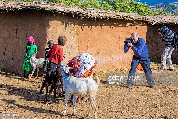 taking photo at masai village - man milking woman stock photos and pictures
