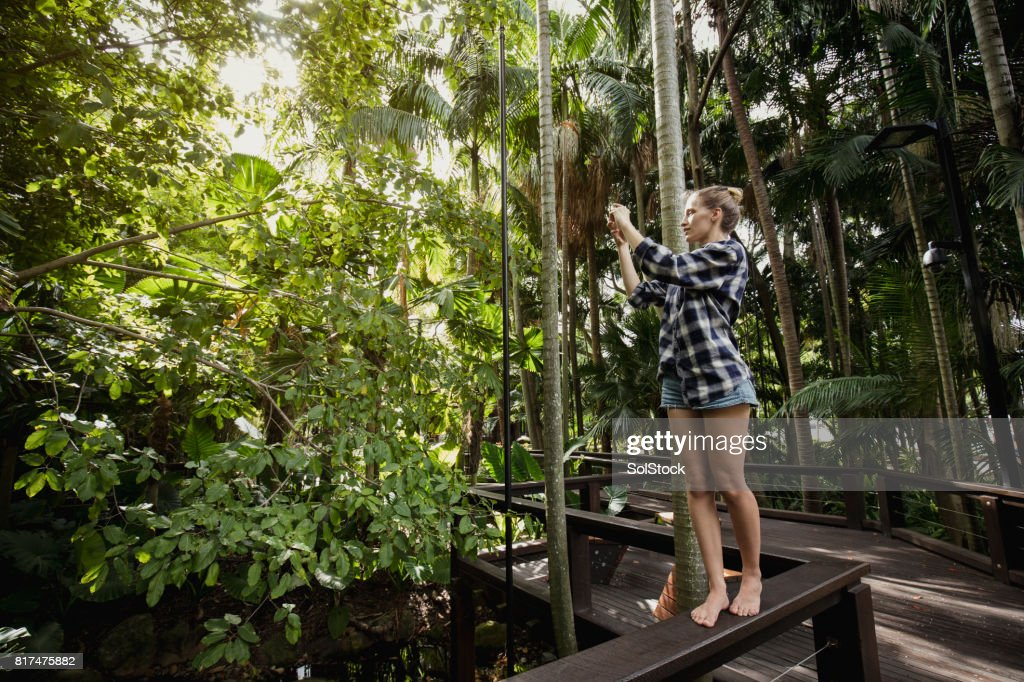Taking Photos in Brisbane Southbank Parklands : Stock Photo