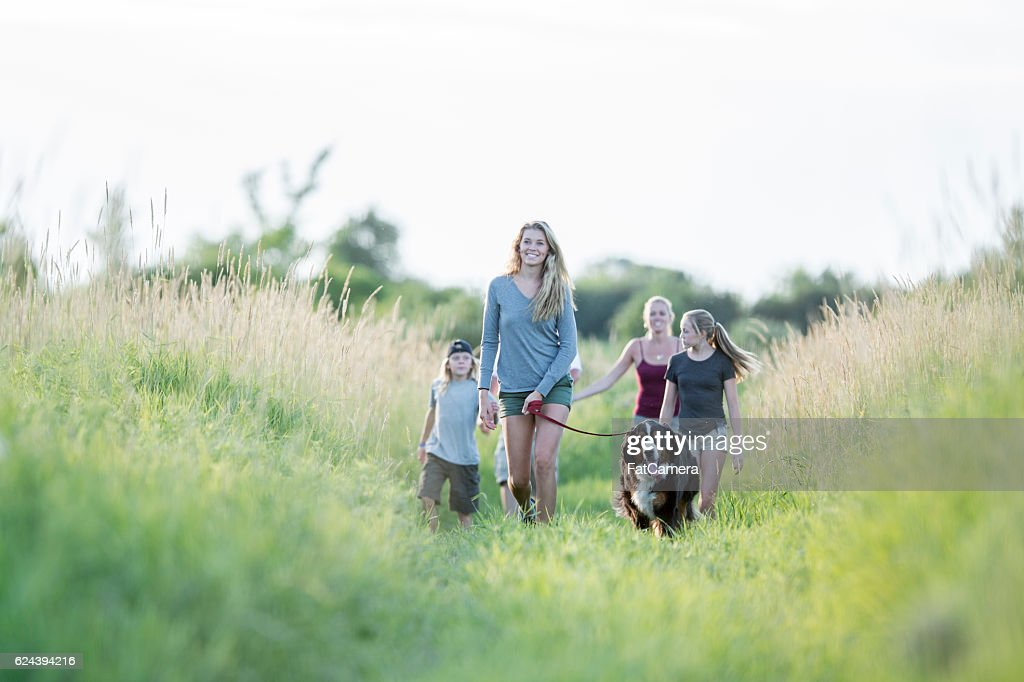 Taking the Dog on a Walk : Stock Photo