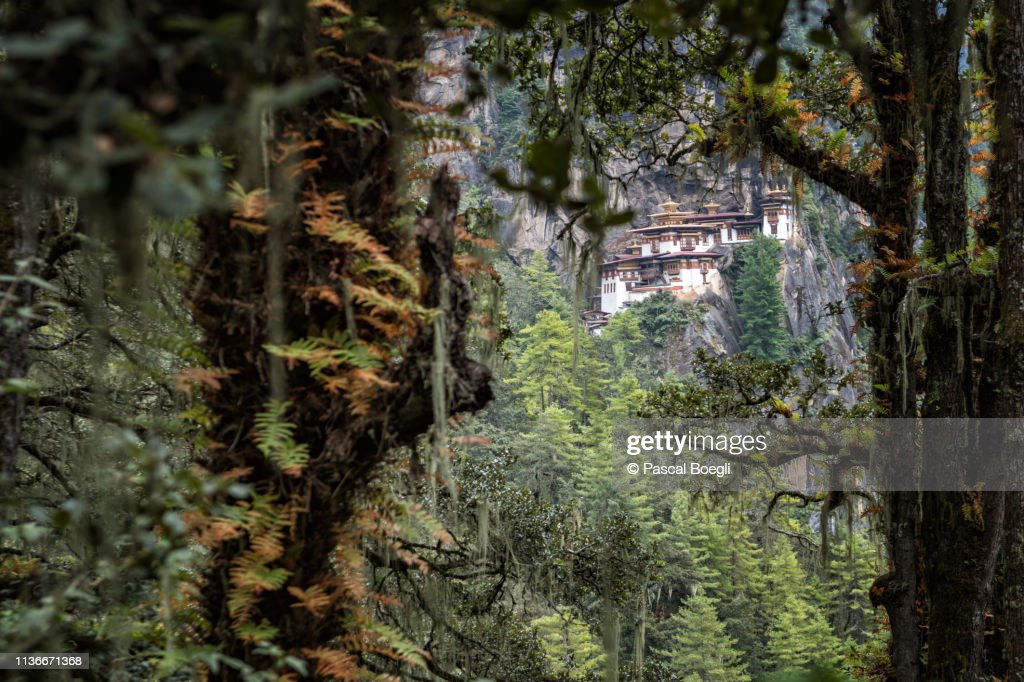 Taktsang monastery (Tiger's Nest) through the forest, Bhutan : Stock Photo
