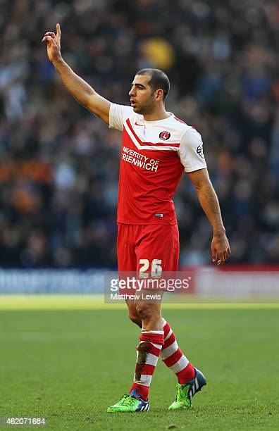 Tal Ben Haim of Charlton Athletic in action during the Sky Bet Championship match between Wolverhampton Wanderers and Charlton Athletic at Molineux...