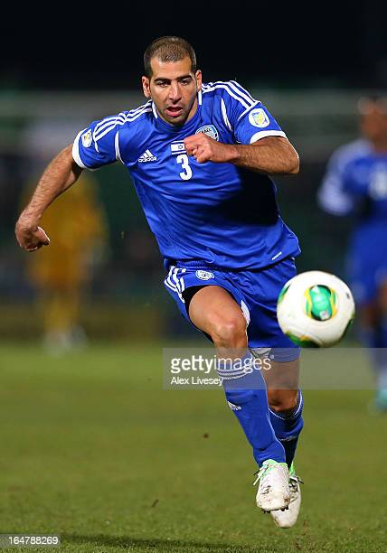 Tal Ben Haim of Israel during the FIFA 2014 World Cup Group F Qualifier match between Northern Ireland and Israel at Windsor Park on March 26 2013 in...