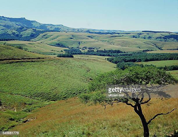 `Tal der tausend Hügel' in Natal- o.J.