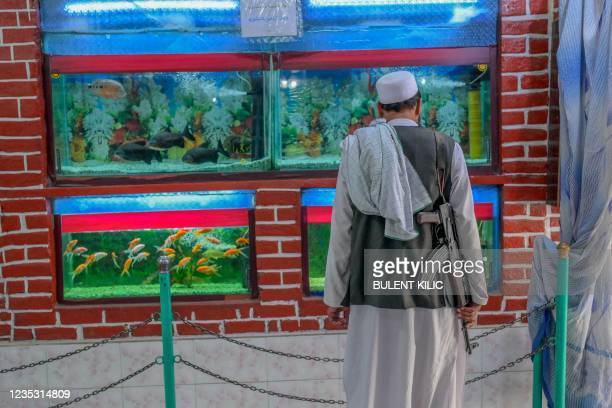Taliban fighter looks at an aquarium at the Kabul Zoo on September 17, 2021.
