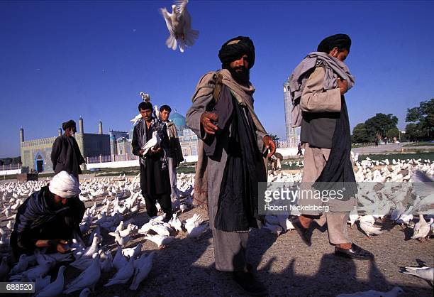 Taliban soldiers feed white doves at daybreak May 27 1997 at the famous 15th century blue mosque of the Shrine of Hazrat Ali in MazariSharif...