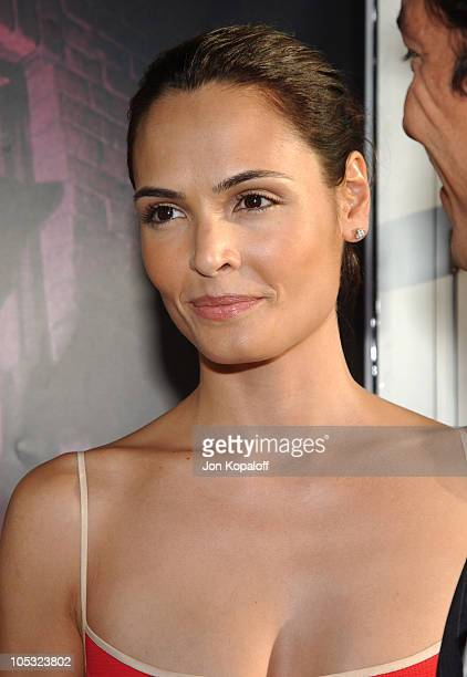 Talisa Soto during Catwoman Los Angeles Premiere Arrivals at ArcLight Cinerama Dome in Hollywood California United States