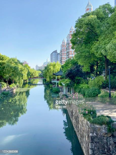 tall buildings and green trees on both sides of hangzhou river in early summer - leipzig saksen stockfoto's en -beelden