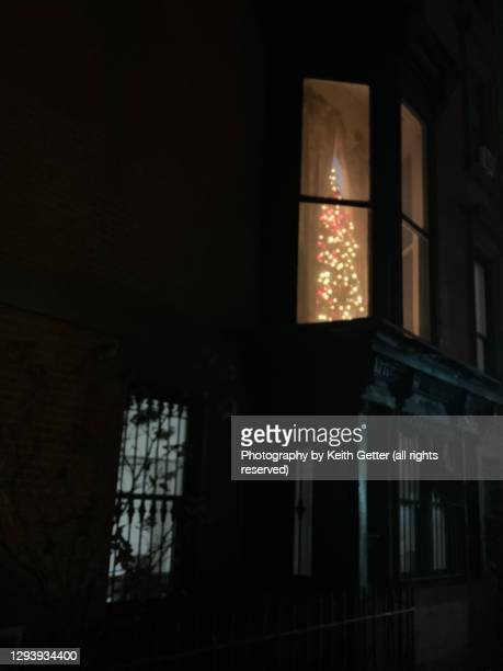 a tall christmas holiday tree through a bay window - fort greene stock pictures, royalty-free photos & images