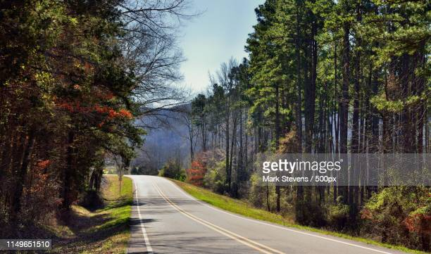 tall trees lining the arkansas highways - ozark mountains stock pictures, royalty-free photos & images