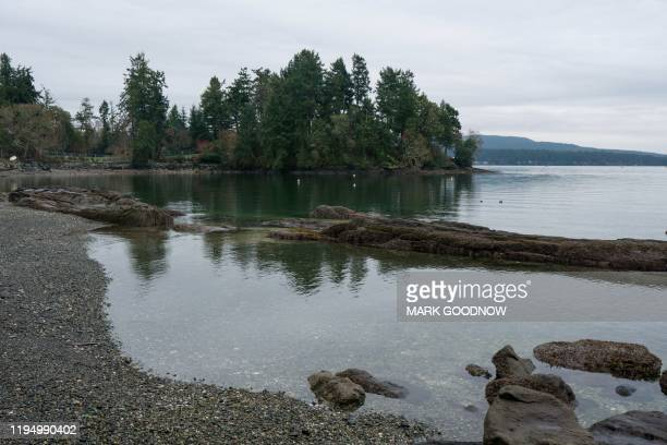 Tall trees on a point shield the view of Meghan and Harry's temporary estate in North Saanich, Municipality in Vancouver Island, British Columbia,...